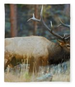 Bull Elk 6x6 Fleece Blanket
