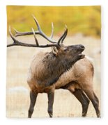 Bull Elk Bugling In The Fall Fleece Blanket