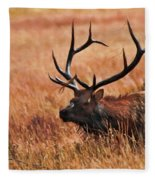 Bull Elk In A Field Fleece Blanket
