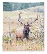 Bull Elk In The Rain Fleece Blanket