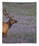 Bull Elk In Velvet Fleece Blanket