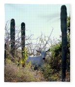 Bull In The Desert Of Mexico Fleece Blanket