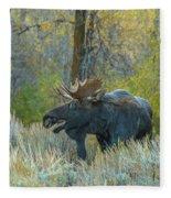 Bull Moose In The Evening Fleece Blanket