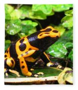 Bumble Bee Poison Frog Fleece Blanket