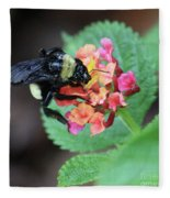 Bumble Bee Square Fleece Blanket