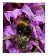 Bumblebee On Orchid Fleece Blanket