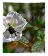 Bumblebee On White Azalea Fleece Blanket