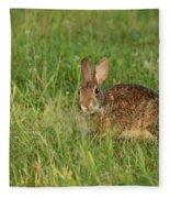 Bunny At Breakfast Fleece Blanket