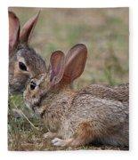 Bunny Encounter Fleece Blanket