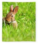 Bunny In Field  Fleece Blanket