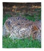 Bunny In The Backyard Fleece Blanket
