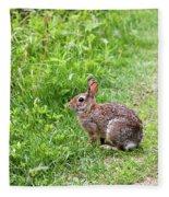 Bunny Rabbit Fleece Blanket