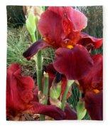 Burgundy Iris Flowers Fleece Blanket