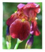 Burgundy Iris Fleece Blanket