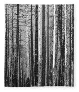 Burnt Forest Fleece Blanket