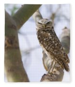 Burrowing Owl Perched On A Branch  Fleece Blanket