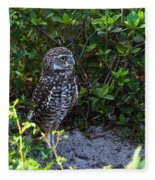 Burrowing Owls At Guard Fleece Blanket