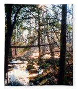 Bushkill Falls Fleece Blanket