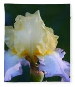 Buttered Blueberry  Fleece Blanket