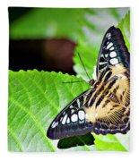 Butterfly 13a Fleece Blanket