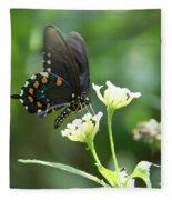 Butterfly 140 Fleece Blanket