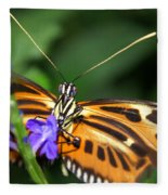 Butterfly 2 Eucides Isabella Fleece Blanket