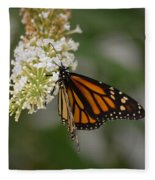 Butterfly #6 Fleece Blanket