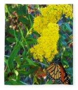 Butterfly At Cape May Nj Fleece Blanket