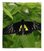 Butterfly Black And Yellow Fleece Blanket