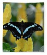 Butterfly Blue Striped Fleece Blanket