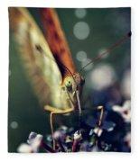 Butterfly Close Up Fleece Blanket