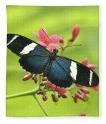 butterfly in Square Fleece Blanket