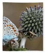 butterfly on a Echinops adenocaulon Fleece Blanket
