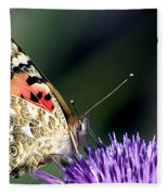 butterfly on a Silybum marianum I Fleece Blanket