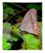 Butterfly On Geranium Leaf Fleece Blanket