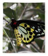 Butterfly One Fleece Blanket