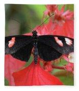 Butterfly Blush Fleece Blanket