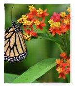 Butterfly Resting On Flower Fleece Blanket