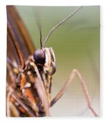 Butterfly Tongue Fleece Blanket
