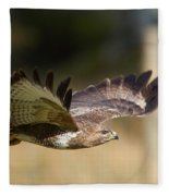 Buzzard In Flight Fleece Blanket