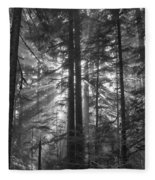 c Fleece Blanket