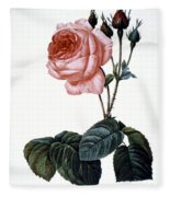 Cabbage Rose Fleece Blanket