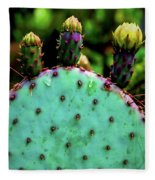Cacti And Friends Fleece Blanket