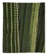 Cactus Abstract Fleece Blanket