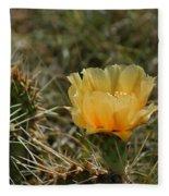 Cactus Bloom Fleece Blanket