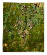 Cactus Buck Fleece Blanket