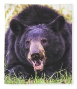 Cades Cove Black Bear Fleece Blanket