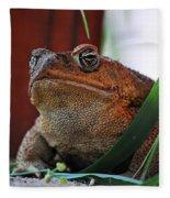 Cain Toad Fleece Blanket