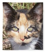 Calico Fleece Blanket
