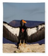 California Condor Fleece Blanket